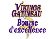 VIKINGS SCHOLARSHIP FOR EXCELLENCE 2016